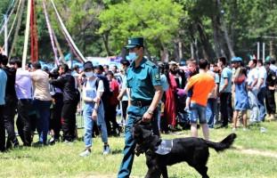 «Янги Ўзбекистон ёшлари бирлашайлик фестивали»да жамоат хавфсизлиги тўлиқ таъминланди